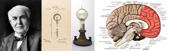 Thomas Edison, la lámpara incandescente comercialmente viable (una de sus famosas aportaciones) y una sección longitudinal del cerebro con la zona involucrada en la creatividad deliberada y cognitiva marcada en rojo. Fuentes (de izquierda a derecha): Wikimedia (http://commons.wikimedia.org/wiki/File:Thomas_Edison2-crop.jpg); Our Documents (http://www.ourdocuments.gov/doc.php?flash=true&doc=46); Science Museum of London (http://www.sciencemuseum.org.uk/images/i014/10276216.aspx); Wikimedia (http://en.wikipedia.org/wiki/Human_brain#mediaviewer/File:Sobo_1909_624.png).
