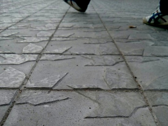 Nuevo panot Diagonal (foto de Raúl)