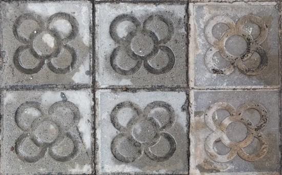 Panot de la flor de Barcelona