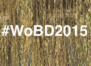 #WoBD2015, conferencias IABSE en el diseño de puentes  (parte II)